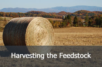 Harvesting the Feedstock