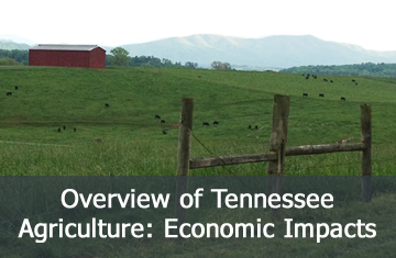 Overview of Tennessee Agriculture: Economic Impacts