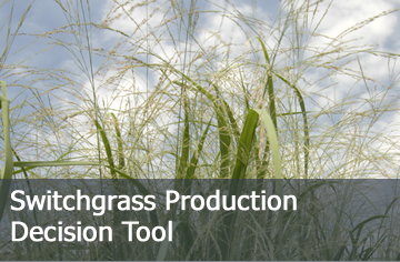 Click here to learn more about the Switchgrass Production Decision Tool.