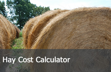 Click here to learn more about the Hay Cost Calculator.