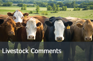 Weekly Livestock Comments
