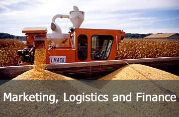 Research - Marketing, Logistics and Finance