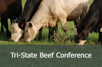 Tri-State Beef Conference